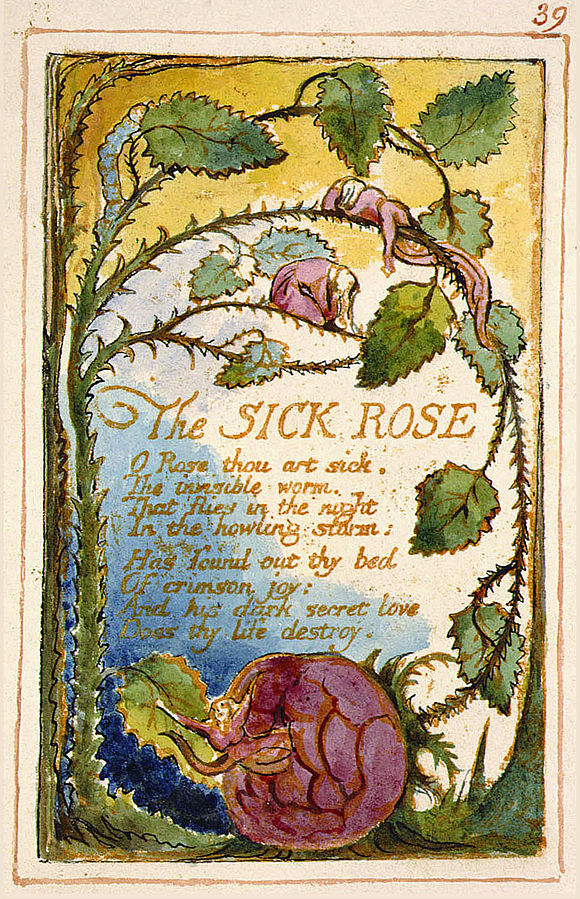 the symbol of the rose in william blakes poem the sick rose About poem 'the sick rose' by william as a literary rose, the conventional symbol of and put a theme to william blake's poem, the sick rose.