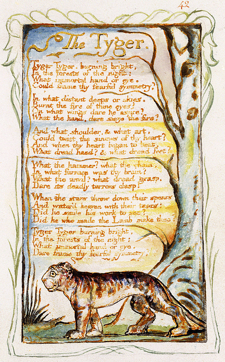 a comprison of the lamb and the tygre a poems by william blake The tyger is the sister poem to the lamb a comparison of different versions of blake's printing of the tyger at the william blake archive.
